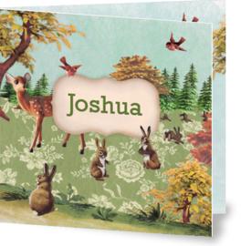 Geboortekaartje Joshua | hertje herfst