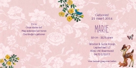 Geboortekaartje Marie   bosdieren roze