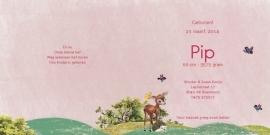 Geboortekaartje Pip | roze busje met dieren