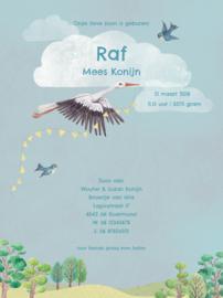 Geboortekaartje Raf | broertje en zus met ooievaar
