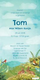 Geboortekaartje Tom | 2e kind giraffe jongen