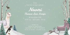 Geboortekaartje Naomi | Alpaca met slee