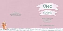 Geboortekaartje Cleo | bakfiets meisje