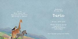 Geboortekaartje Dario | luchtballon met dieren jongen
