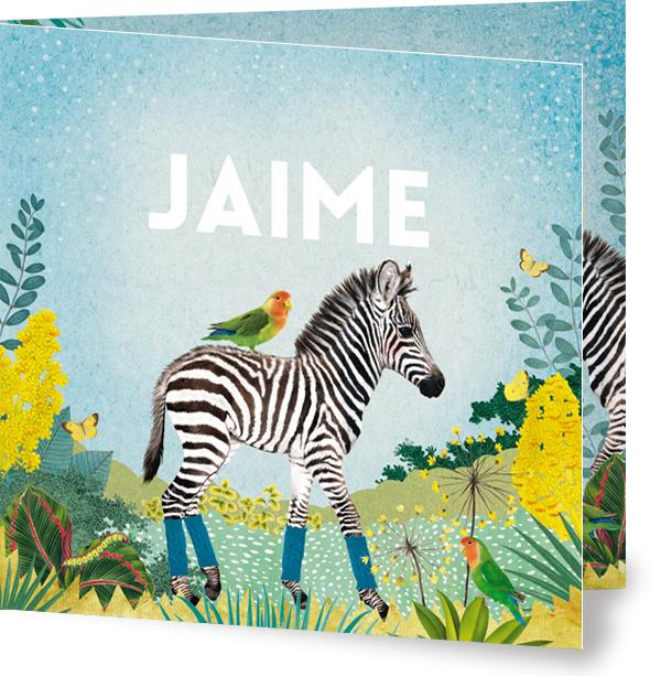Geboortekaartje Jaime, kleine zebra in landschap