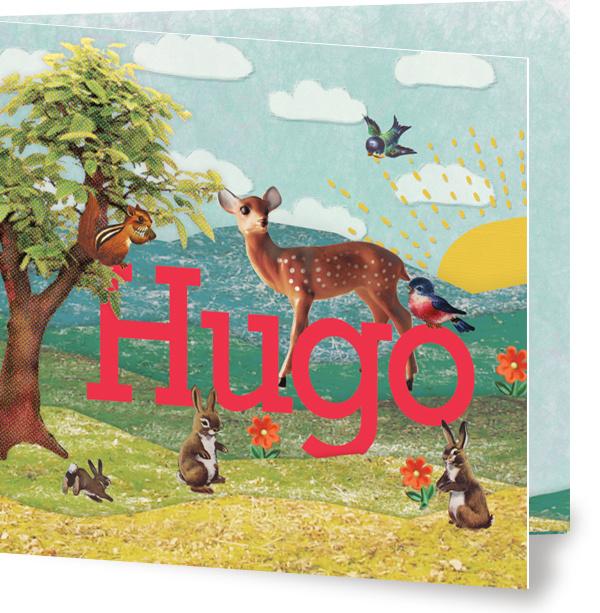 Geboortekaartje Hugo | jongensnaam in landschap