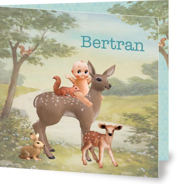 Geboortekaartje Bertran | jongetje met hertje