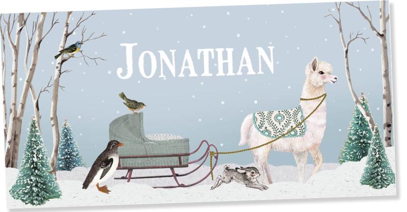 Geboortekaartje Jonathan | Alpaca met slee
