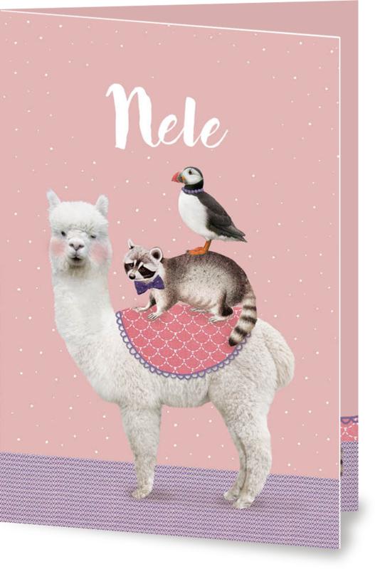 Geboortekaartje Nele | alpaca wasbeer vogel