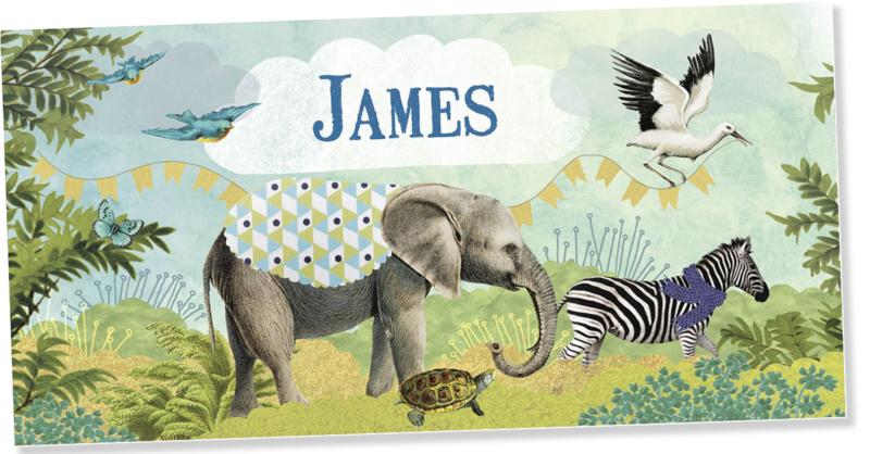 Geboortekaartje James | dierenparade jongen
