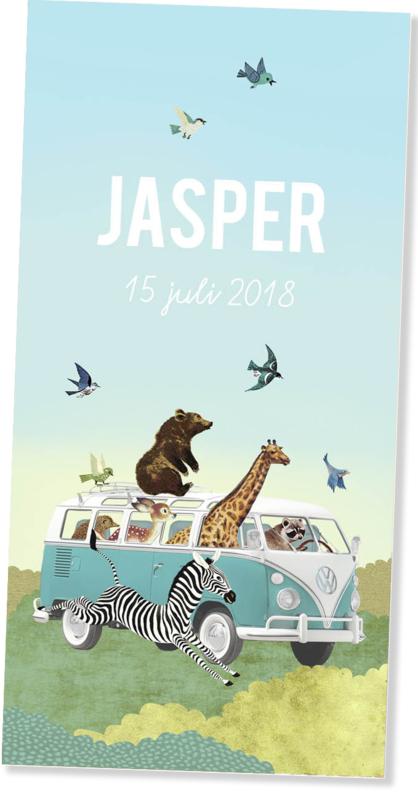 Geboortekaartje Jasper | mint busje met dieren langwerpig