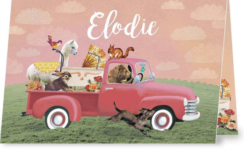 Geboortekaartje Elodie | dieren in  roze pick-up liggend
