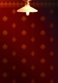SAD-DE049B Kleine plafondlamp
