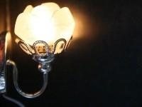 WH-EL195 Wandlamp (zilver)
