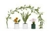 LY9015 Plantenset