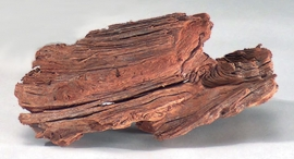 Driftwood, 18-28 cm