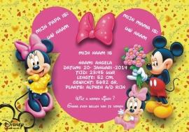 Disney meisjes poster
