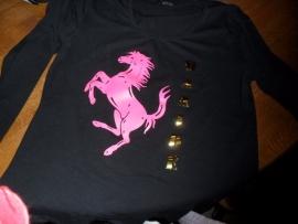 Mooi Paarden T-Shirt eventueel mat naam kind of paard