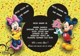 Disneyneutraal poster
