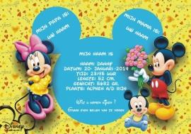 Disney jongen poster