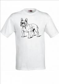 France bulldog 2