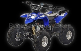 Quad (polaris) 110cc kinderquad