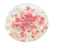 Resin cabochon droogbloemetjes roze