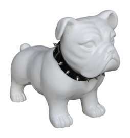 buldog pup kunststof hoogglans wit decoratief