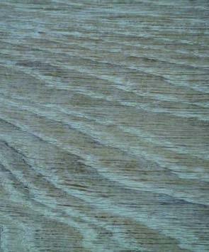 amazona-kalkwas.jpg