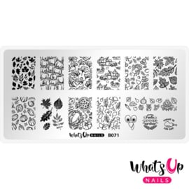 Whats Up Nails - Stamping Plate - B071 - The Whole Whole Nine Gourds