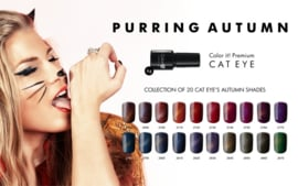 Color IT Premium - Hybrid Cat Eye Gel - 2850