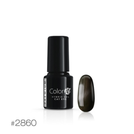 Color IT Premium - Hybrid Cat Eye Gel - 2860