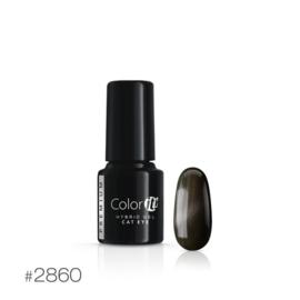 Color IT Premium - Hybrid Cat Eye Gel - 2860