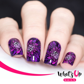 Whats Up Nails - Stamping Plate - B005 Nature's Beauty Garden