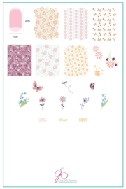 Clear Jelly Stamper - Big Stamping Plate - CJS_194 - Spring Daisy
