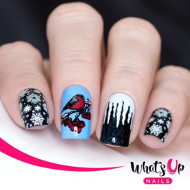 Whats Up Nails - Stamping Plate - B035 Icy Wonderland