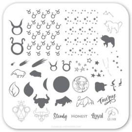 Clear Jelly Stamper - Stamping Plate - CJS_Z03 - Taurus