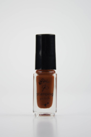 Clear Jelly Stamper Polish - #74 Rusted Mud