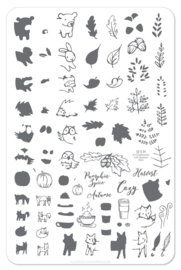 Clear Jelly Stamper - Big Stamping Plate - CJS_LC25 - Pumpkin Spice