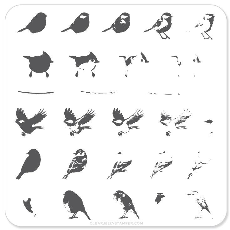Clear Jelly Stamper - Stamping Plate - CJS_30 - Itty Bitty Birds