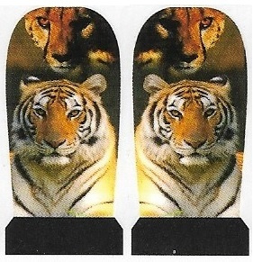 Whole Nail Waterdecal - Tiger