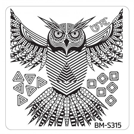 Bundle Monster - Musik City Nail Art Manicure Stamping Plate - BM-S315: Whoo Are You?