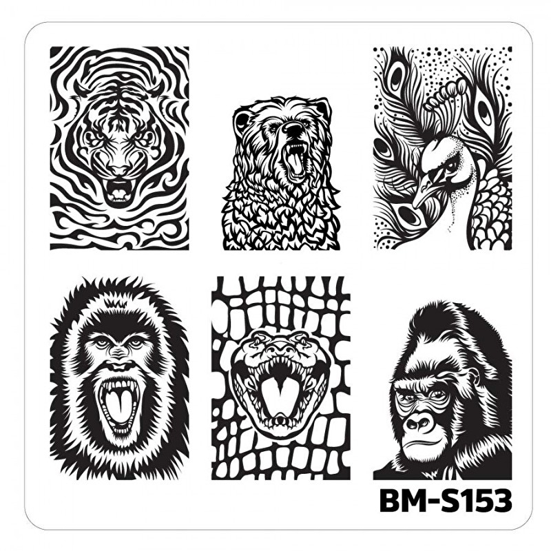 Bundle Monster - Nail Art Stamping Plates-Fuzzy and Ferocious - BM-S153, Fangs and Feathers