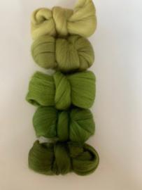 Merinowol kleur set: Groen 5 x  ongeveer 10 gram merinowol 20-21 micron Kleur nrs. 122-129-149-160-164