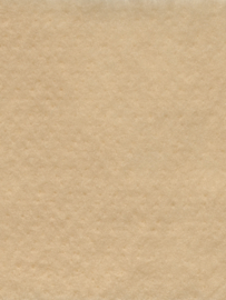 Naaldvlies 19,5 micron, zand 17, 120 cm breed per 35 cm
