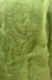 Bergschaap in vlies, pistache