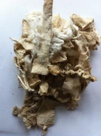 Zijden Carrier rods, 5 gram, ecru