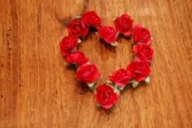 bl1202 rood hart 24 st