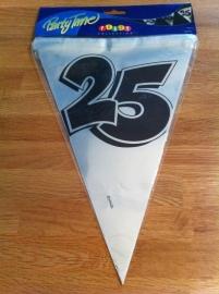 vlaggenlijn zilver 25