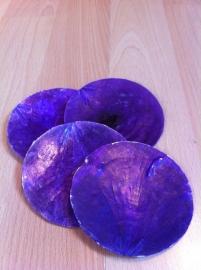 schelpen decoratie paars prijs per stuk
